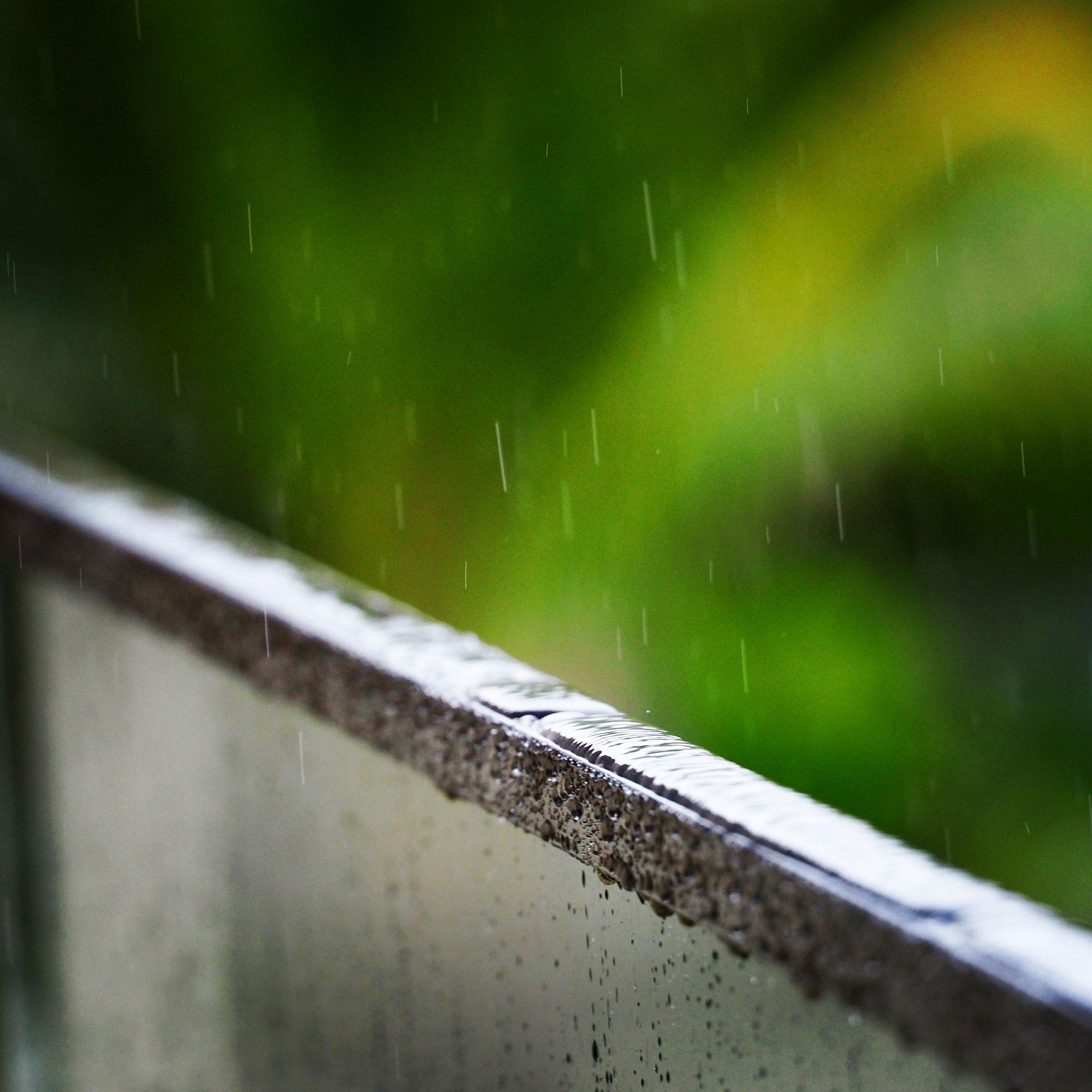 Rain Recital